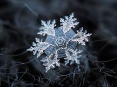 Światowy Dzień Śniegu – to dziś!