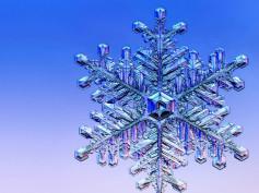 Ciekawostki prosto ze… śniegu!