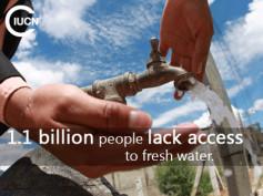 25% życia na zdobywanie wody? To nie mit, to smutna rzeczywistość!