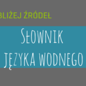 Polskie powiedzenia związane z wodą wytłumaczone!