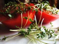 Nawadnianie i odżywianie nowalijkowe… czy zdrowe?