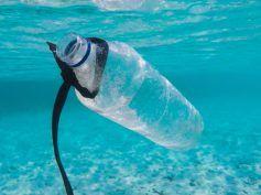 Mniej mikroplastiku w Bałtyku? O projekcie FanpLESStic-sea
